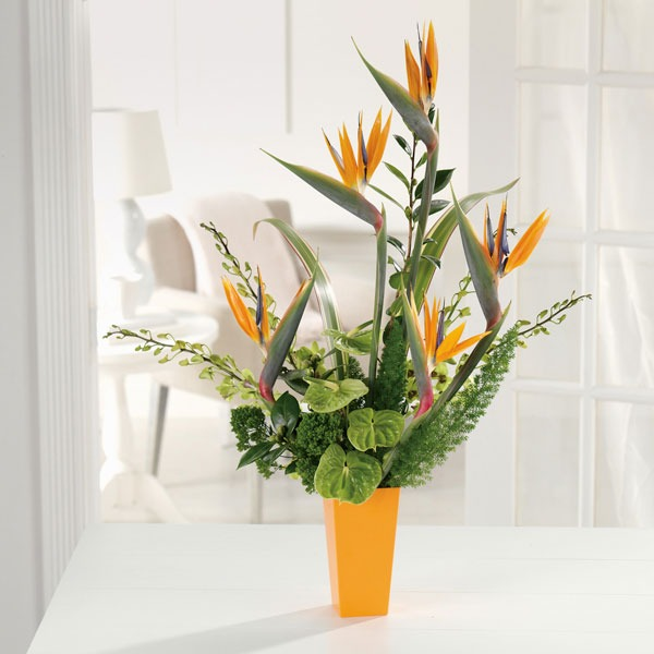2f049551f31 Tropical Paradise - Heather & Vine Fine Floral Design